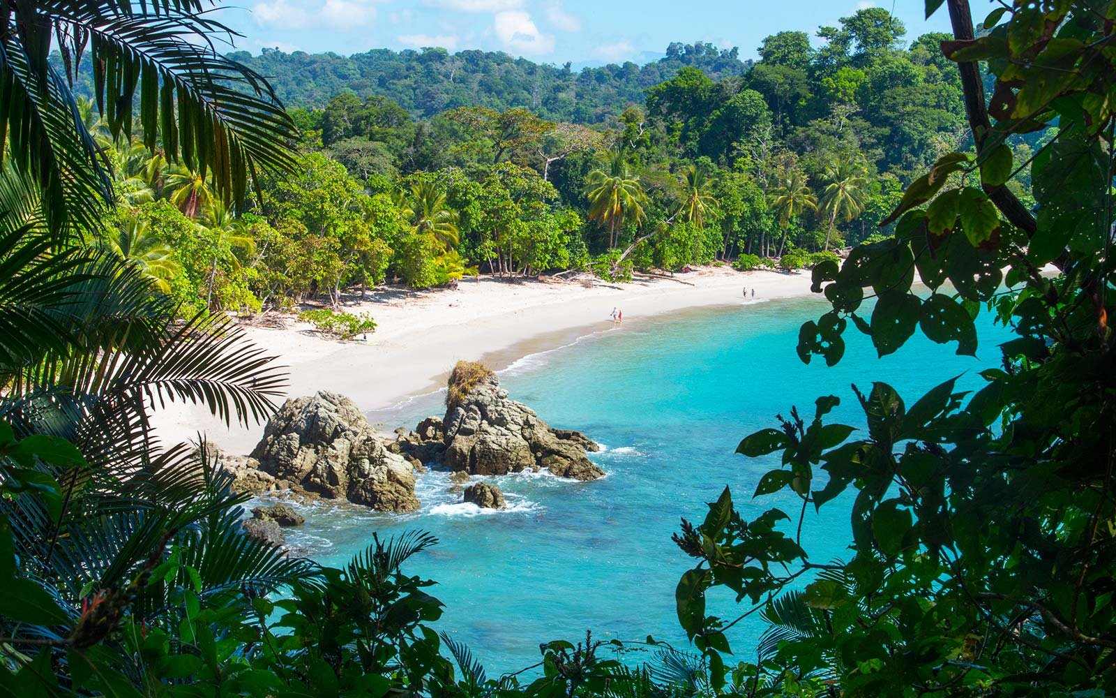 Manuel Antonio Beach through trees.