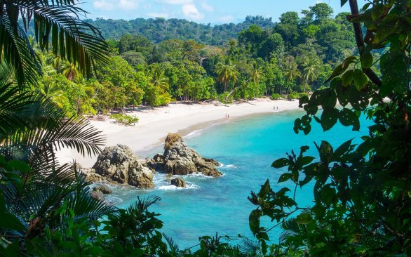 Manuel Antonio Beach through trees.