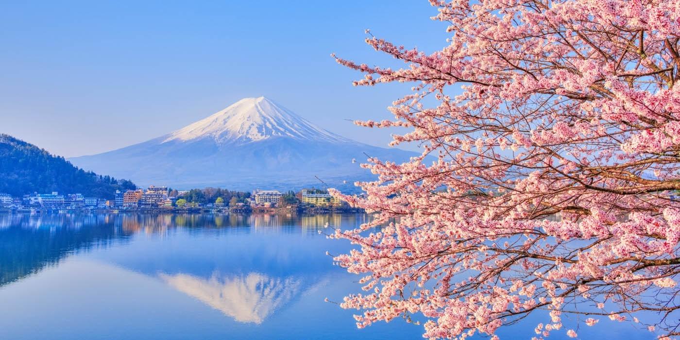 primavera-en-japon-consejos