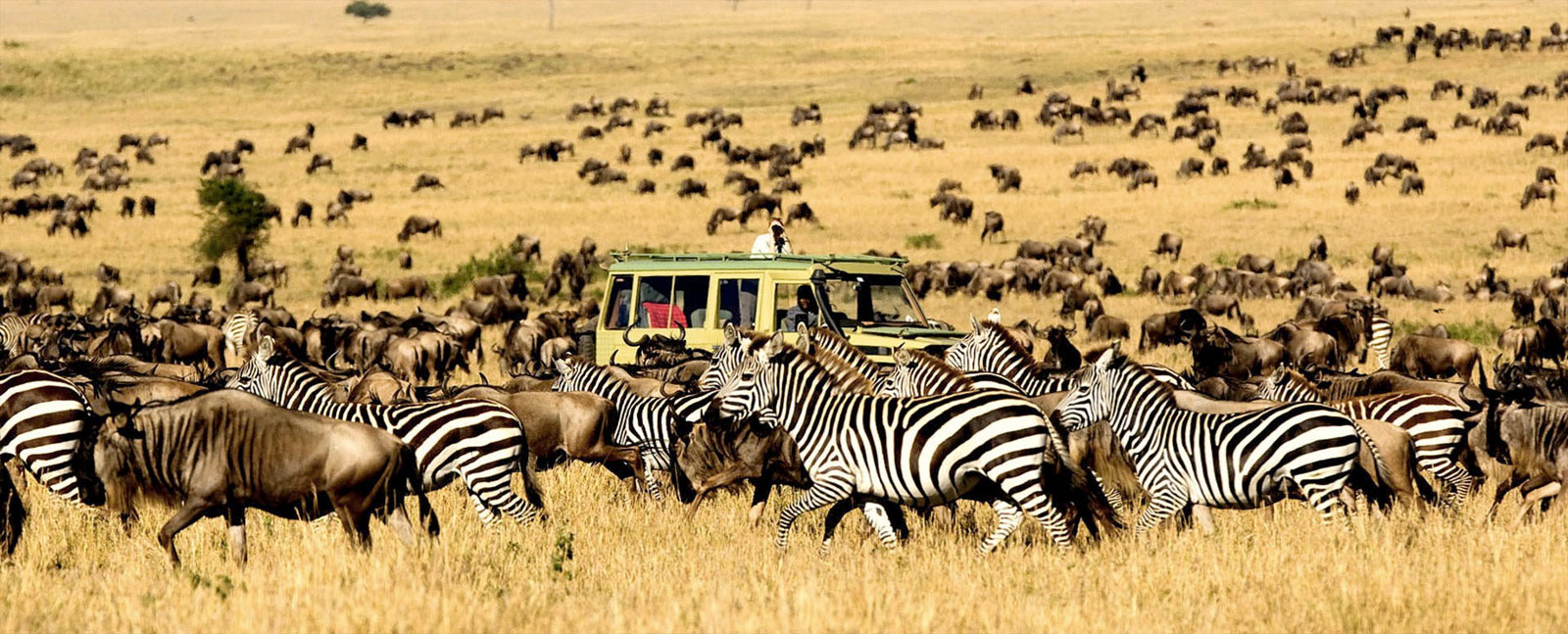 African-Safari-Costs